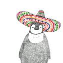 Penguito